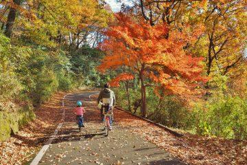 国営 武蔵丘陵 森林公園 でサイクリング♪