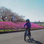 子どもたちと荒川サイクリングロードでお花見ライド!